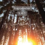 Kapodaster – 3, 4, 5